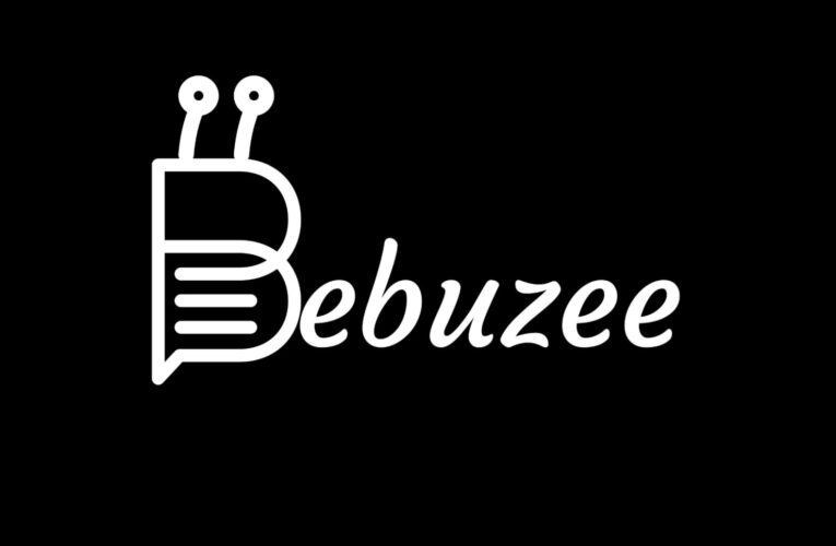 Bebuzee Mines Nollywood Set To Become The Largest Streaming Service In African Continent