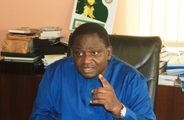 What Does Femi Adesina Know?